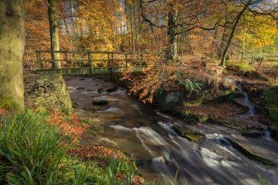 Clough Brook