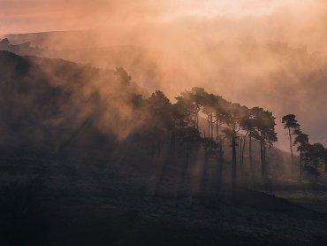 Misty Ramshaw Rocks