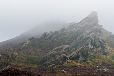 Ramshaw Rocks In Staffordshire