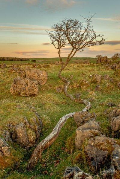 Roystone Rocks Derbyshire