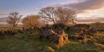 Roystone Rocks Peak District