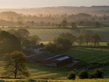 Thorpe Pastures