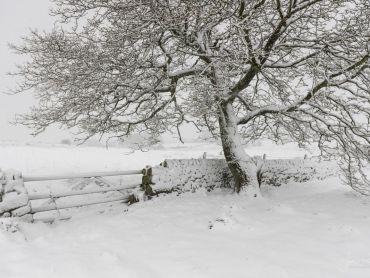 Warslow - Staffordshire