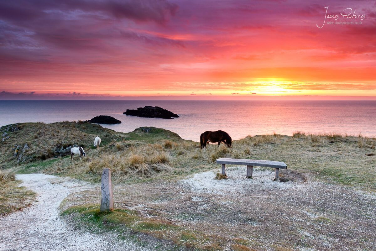 A wonderful red and purple sky transformed the scene on Llanddwyn Island and provided me with some great light.