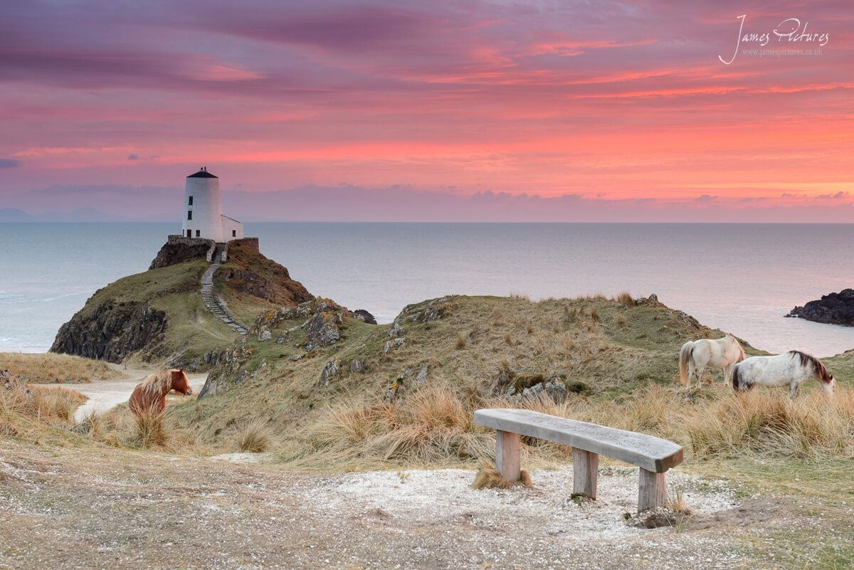 Wales is a stunning location for Landscape Photography, this image was taken in North Wales, at Llanddwyn Island, where wild horses roam and the old lighthouse lights the Menai Straights at night.