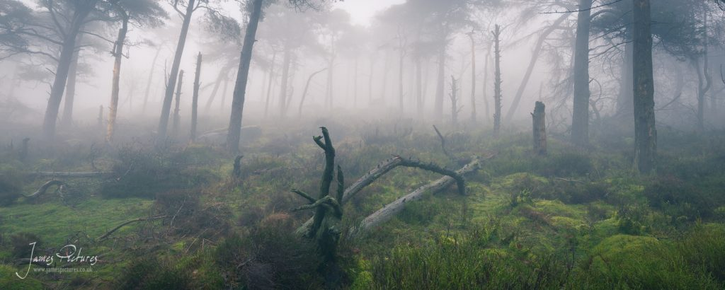 Under the Roaches with thick mist makes for some stunning opportunities.