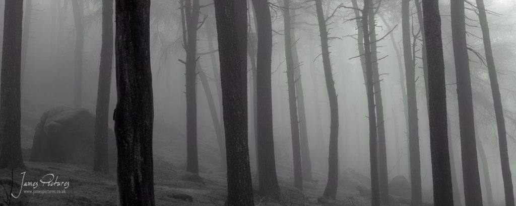 The Roaches can be a dark and mysterious place when the mist is present.